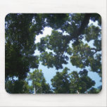 Waihee Forrest Mouse Pad