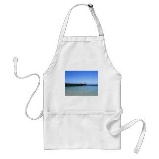 Waikiki Beach, Honolulu, Oahu, Hawaii, USA. Standard Apron