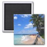 Waikiki Beach, Oahu, Hawaii Refrigerator Magnet
