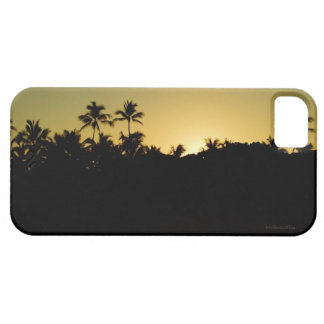 Waikiki Sunrise iPhone SE/5/5s Case