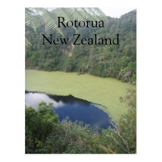 Waimangu volcanic valley, Rotorua New Zealand Postcard