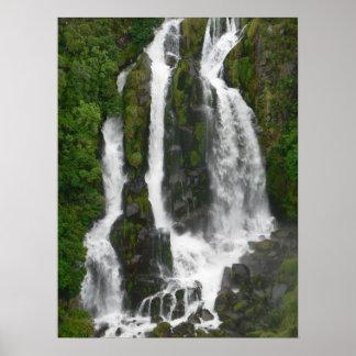Waipunga Falls Poster