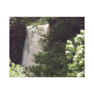 Wairere Falls Canvas Print