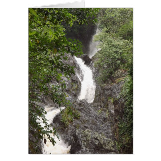 Wairere Falls, Whakatane Card