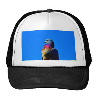 wait for love and peace  dove pigeon animal bird trucker hat