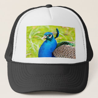 wait for love  peafowl peacock trucker hat