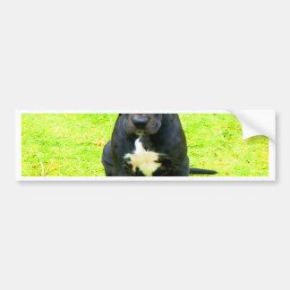 Wait for mom love great dane dog black animal bumper sticker