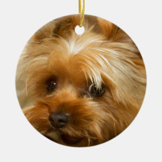 Wait for mom love  haley dog yorkie terrier ceramic ornament