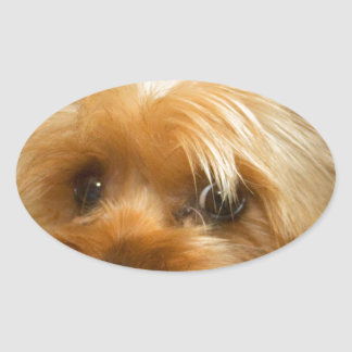 Wait for mom love haley dog yorkie terrier stickers