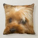 Wait for mom love  haley dog yorkie terrier throw pillows