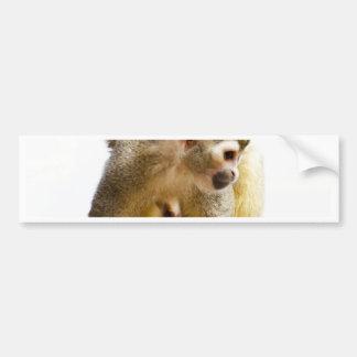 Wait for mom love monkey rainforest tree snout bumper sticker