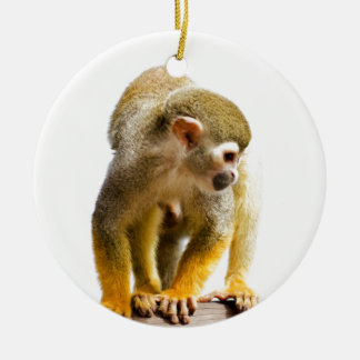 Wait for mom love monkey rainforest tree snout ceramic ornament