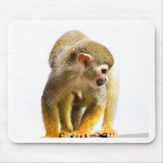 Wait for mom love monkey rainforest tree snout mouse pad