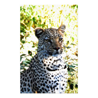 Wait for next opportunity Leopard Stationery Design