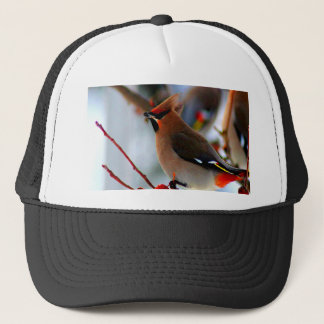 wait for peace joy love bohemian waxwing bird trucker hat