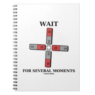 Wait For Several Moments (Quadrupole Moment) Notebook