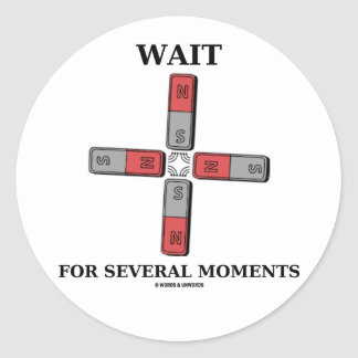 Wait For Several Moments (Quadrupole Moment) Sticker