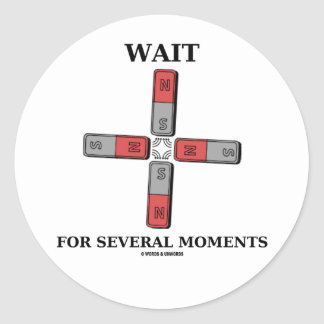 Wait For Several Moments (Quadrupole Moment) Stickers