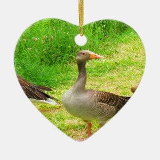 wait for you greylag goose anser wild animal bird ceramic ornament