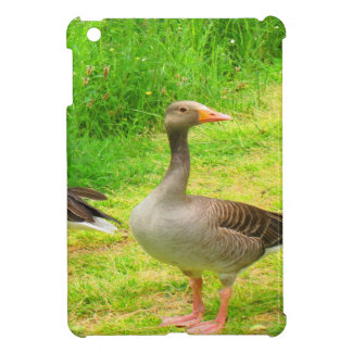 wait for you greylag goose anser wild animal bird iPad mini case