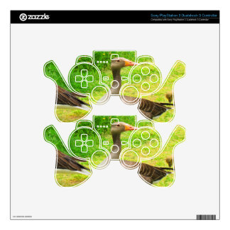 wait for you greylag goose anser wild animal bird decal for PS3 controller
