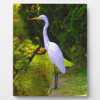 Wait for you love in peace bird photo plaques