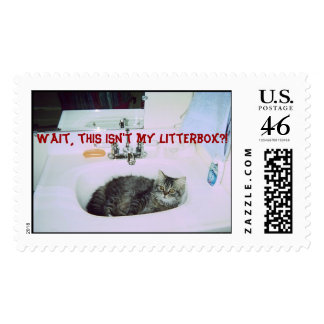 Wait, this isn't my litterbox?! Postage Stamp