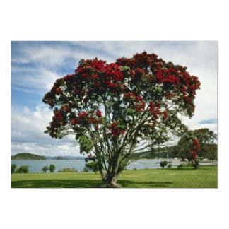 Waitangi, Christmas Tree, New Zealand flower 5x7 Paper Invitation Card