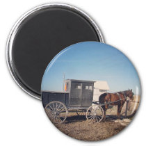 Waiting Amish Horse and Buggy Magnet