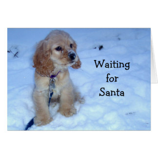 WAITING FOR SANTA says SNOWBOUND SPANIEL PUPPY Cards