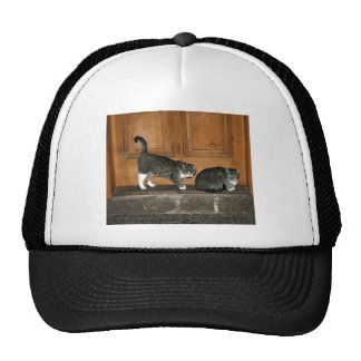 Waiting for the milkman trucker hats