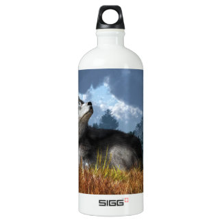 Waiting for the Snow SIGG Traveler 1.0L Water Bottle