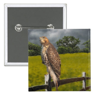 Waiting for the Storm - Red tail Hawk 2 Inch Square Button
