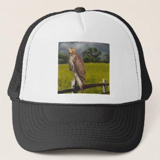 Waiting for the Storm - Red tail Hawk Trucker Hat