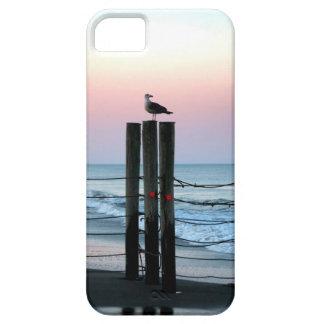 Waiting On Sunset iPhone SE/5/5s Case