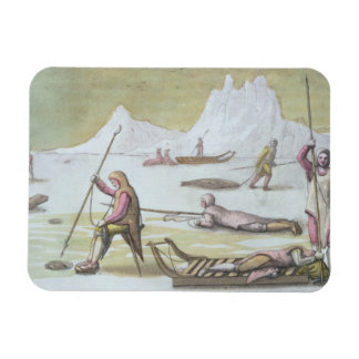 Waiting on the Ice detail from Seal Hunting colo Vinyl Magnets