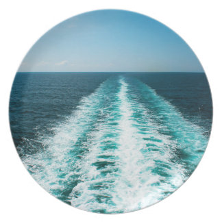 Wake From a Cruise Ship Party Plates