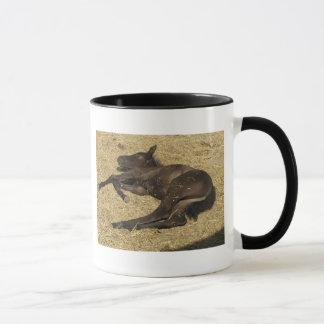 Wake me at meal-time! mug