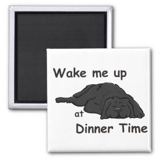 Wake Me Up At Dinner Time Magnets