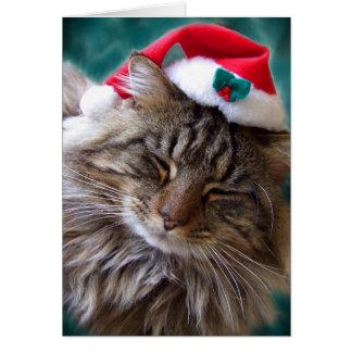 Wake Me Up Santa Cat Card