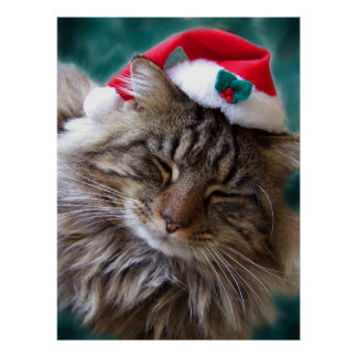 Wake Me Up Santa Cat Fine Art Print