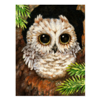 Wake Up, Little Owl - Cute Bird Art Postcard