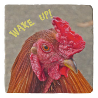 """WAKE UP!"" /ROOSTER  STONE TRIVET"