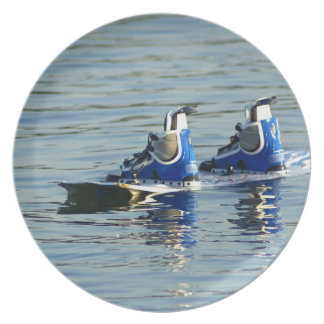 Wakeboarding 360 Plate