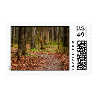 Wakening Forest Postage Stamps