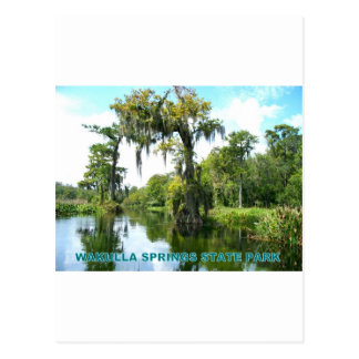 WAKULLA SPRINGS STATE PARK - FLORIDA POSTCARD