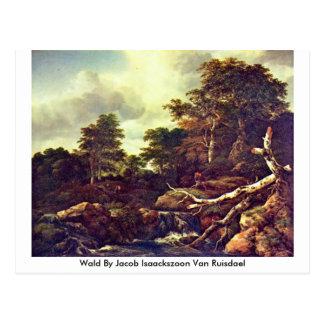 Wald By Jacob Isaackszoon Van Ruisdael Postcard