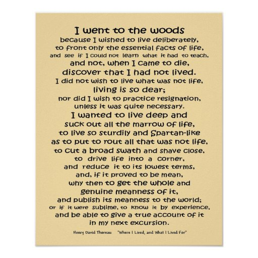 Woods Quotes: Walden Life In The Woods Quote Poster