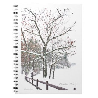 Walden Pond: A touch of Winter Note Book