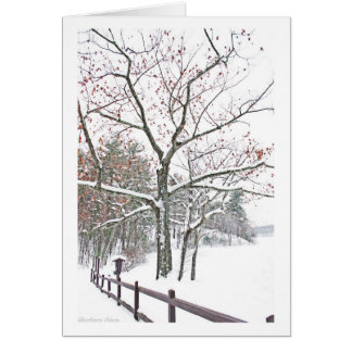 *Walden Pond: Appointments in Nature: Holiday Card